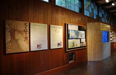 三鷹の森ジブリ美術館 2階ギャラリー『バックさんの物語』展