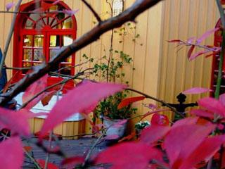 鮮やかな赤とカフェ